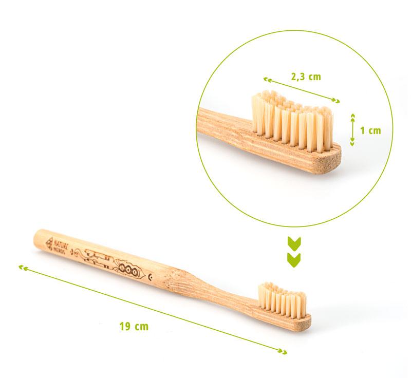 Bambus-Zahnbürste-masse
