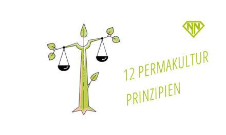 Die 12 Permakultur-Prinzipien nach David Holmgren