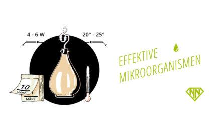 Mit Effektiven Mikroorganismen Nährstoffe aufspalten & Böden verbessern