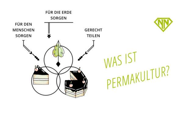 Was ist Permakultur? – Einblicke in eine zukunftsfähige Denkweise