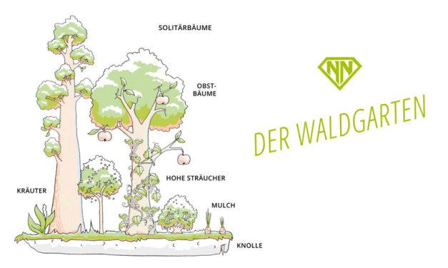 Der Waldgarten – gestalte Deinen Garten zu einem vielfältigen Paradies