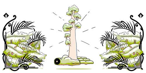 baeume-pflanzen